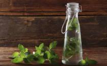 Рецепты домашних настоек из мяты и мелиссы пошаговая инструкция