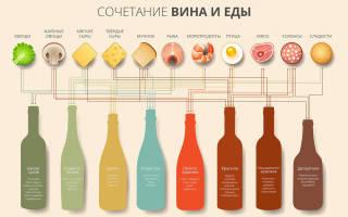 Как выбрать хорошее вино – советы профессионалов