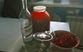 Рецепт настойки клюквы на спирту: как приготовить настойку из клюквы на спирту?