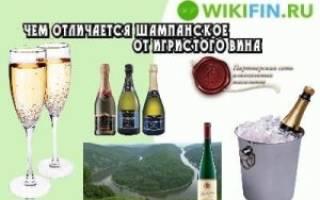 Чем отличается шампанское от игристого вина?