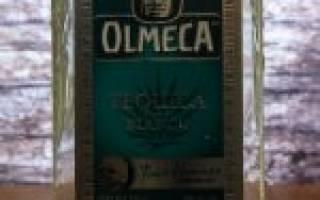 История Olmeca