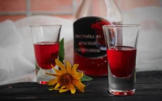Настойка из красной смородины на водке (спирту, самогоне) в домашних условиях по простому рецепту