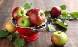 Домашняя настойка из яблок на водке, самогоне и спирту, простые рецепты приготовления