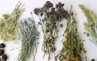 Простые рецепты самогона на травах