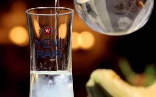 Гайд по турецкой водке ракы: история, как пить, чем закусывать
