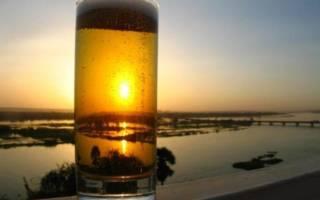 Фильтрация домашнего пива: методика и тонкости процесса