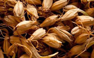 Как приготовить брагу из ячменного солода, Самогон и Брага