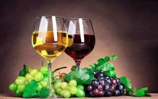 Вино из винограда: 2 самых простых пошаговых рецепта в домашних условиях