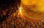 Рецепт домашнего ячменного пива (из ячменного солода), Алкопроф