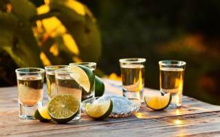 Текила из самогона: 2 рецепта мексиканского напитка в домашних условиях