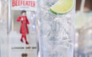 Коктейли с джином – лучшие классические рецепты от
